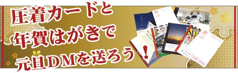 shinsei_img_01